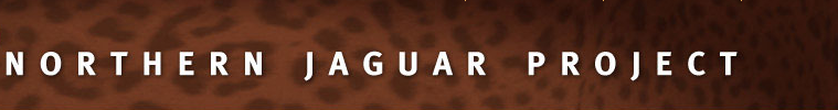 Nothern_Jaguar_Project_Name